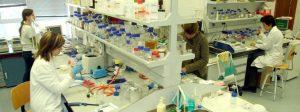 Estudios moleculares de cepas invasivas de <i>Streptococcus agalactiae</i> (SGB)