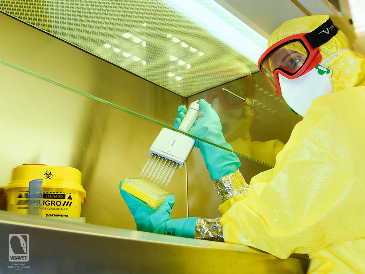 Bioseguridad y Prevención de Riesgos laborales en los Laboratorios de Microbiología (PRLM)