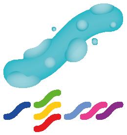 Microbiología del Medio Acuático